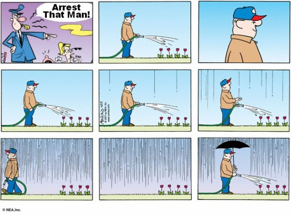 comic of man watering plants even though it is raining