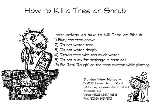 How Not to Plant a Tree or Shrub