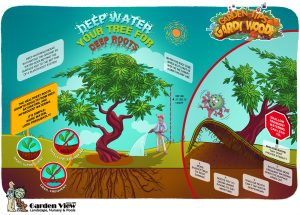 Benefits of Deep Watering infographic Garden Tip