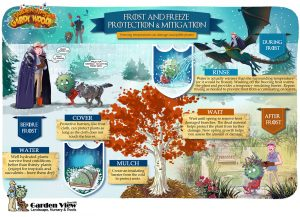 Frost and Freeze Garden Plant Protection