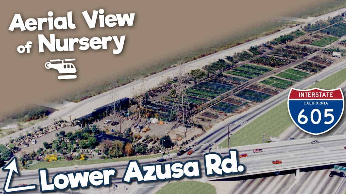 AerialNurseryviewwithandLowerAzusaRdindicators
