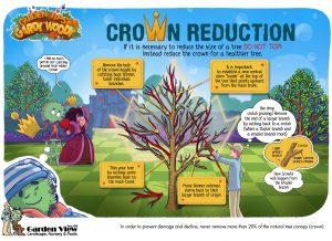 Crown Reduction Pruning Tip