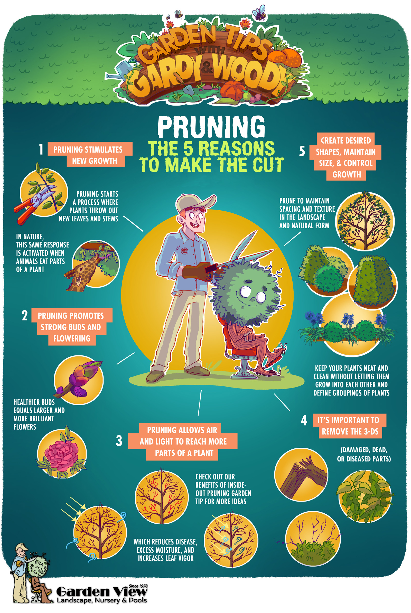 5 reasons to prune trees and hedges infographic