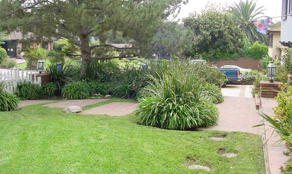 Shackett front yard before