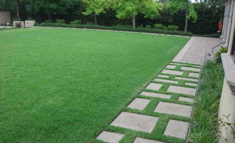 Lawn and Steppers in award winning Landscape Maintenance Account