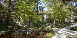 HOA pathway and trees of first place award winning property