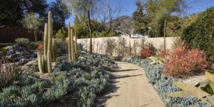 backyard pathway through succulent garden in Sierra Madre, CA
