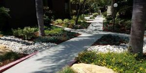 HOA landscape award winning pathway