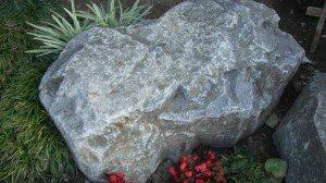 Azusa Grey boulder with plantings