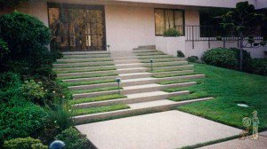 Grass divided paver steps going up to front of house
