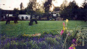 English Garden with Topiaries