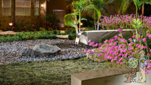 Front Yard Pondless water feature