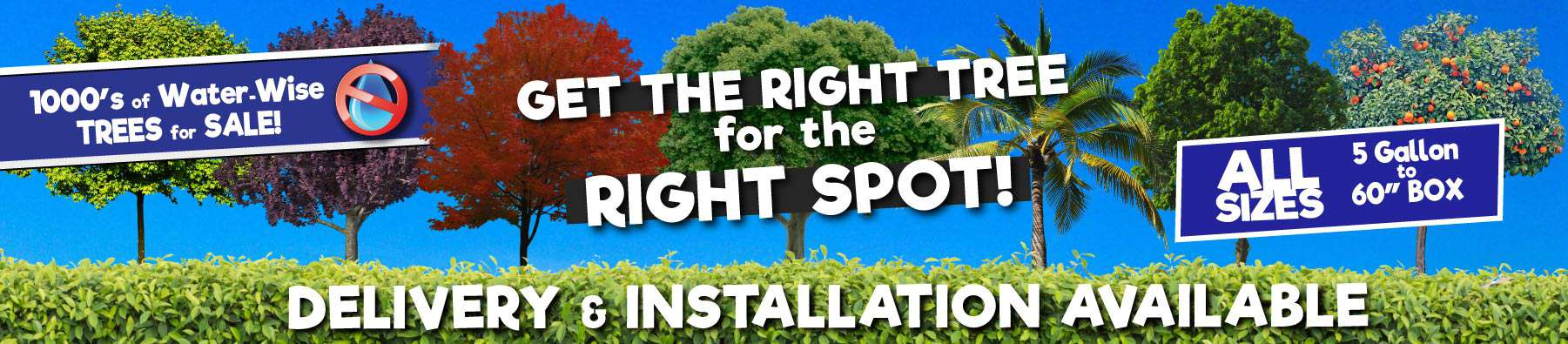 Get the Right Tree for the right Spot