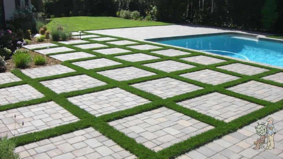 grass divided pavers pool