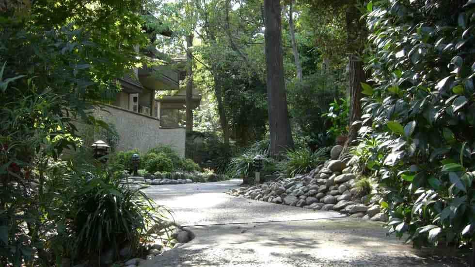 Asi landscape services garden grove ca for Garden grove pool service