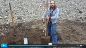 Thumbnail of video clip - Ian planting a tree