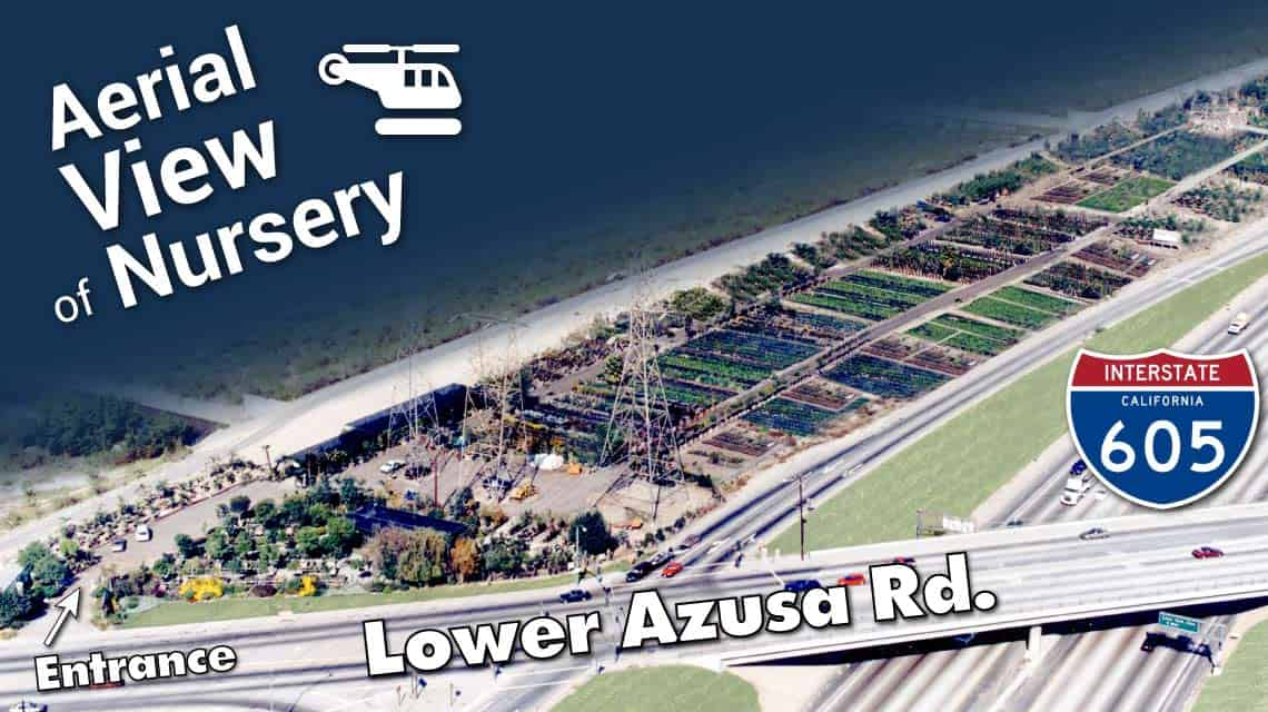 Aerial view of Garden View Nursery in Irwindale, California at the corner of Lower Azusa Rd and the I-605 freeway