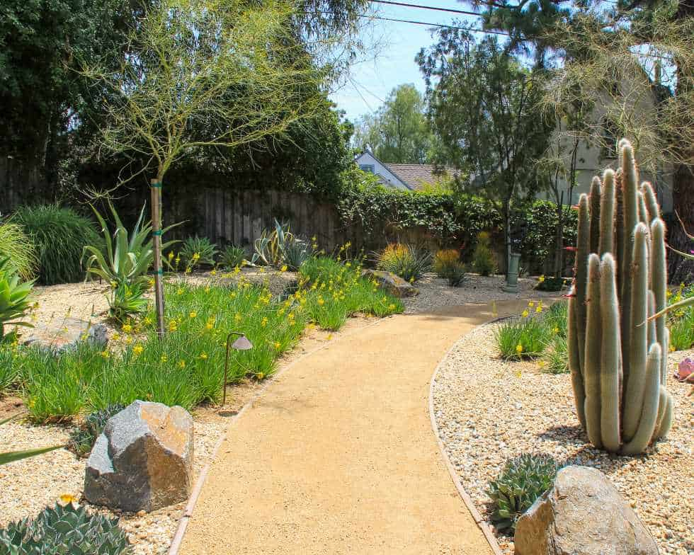 Altadena Backyard sustainable landscape with succulents, boulders, and decomposed granite