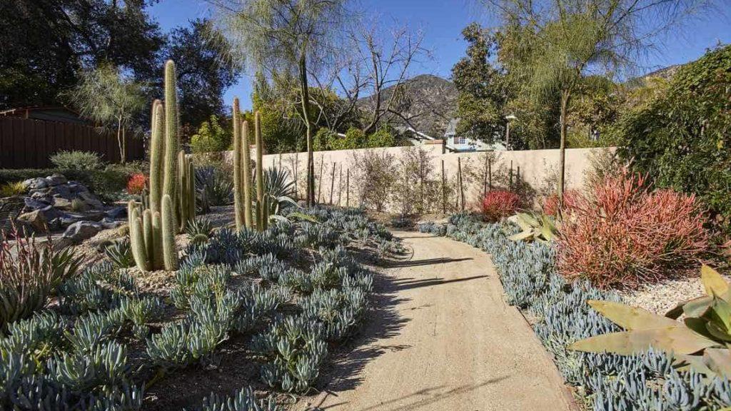 backyard pathway through succulent garden in Sierra Madre, CA