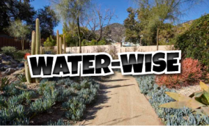 Water-Wise Varieties