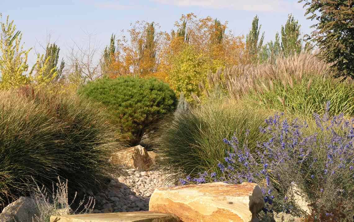 Water Wise Landscaping Guide Garden View Inc